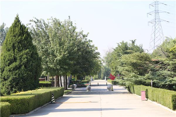 长青园陵园