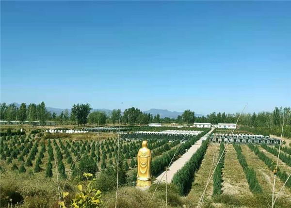 涿州天福园公墓