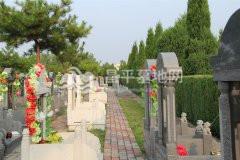 立碑墓地图片