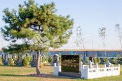 卧龙公墓墓地