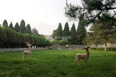 世界华侨陵园景观