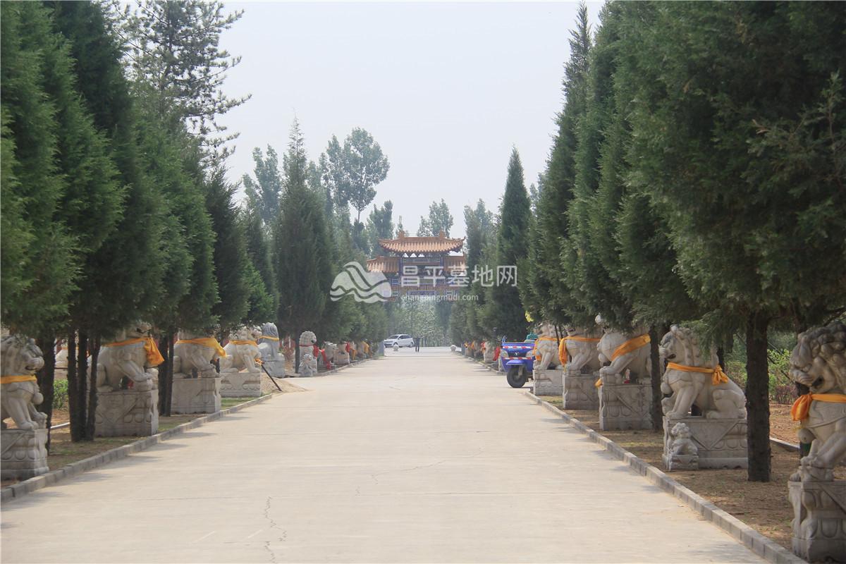 园区景观6