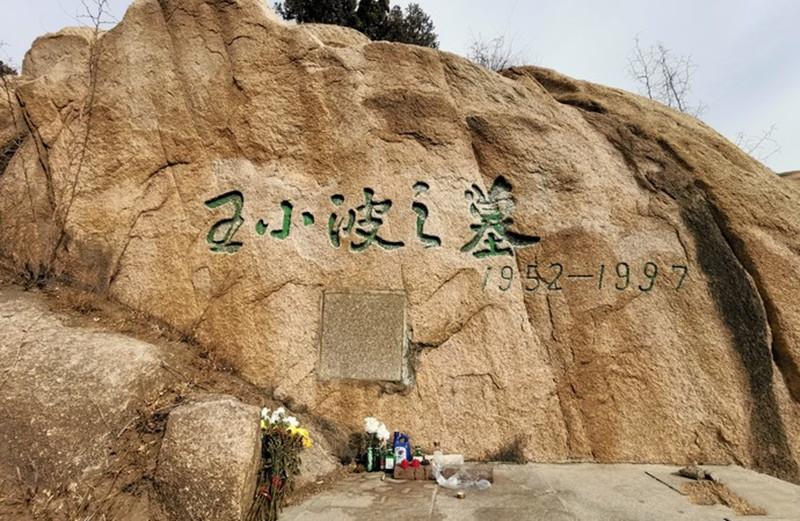 佛山陵园王小波墓地