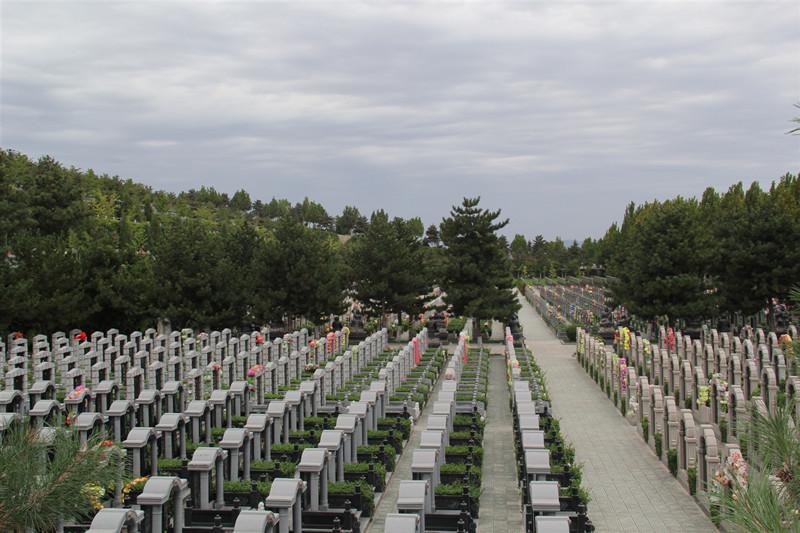 灵山宝塔陵园墓地