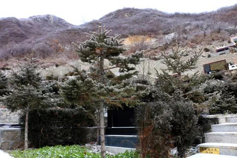 九公山长城纪念林景观