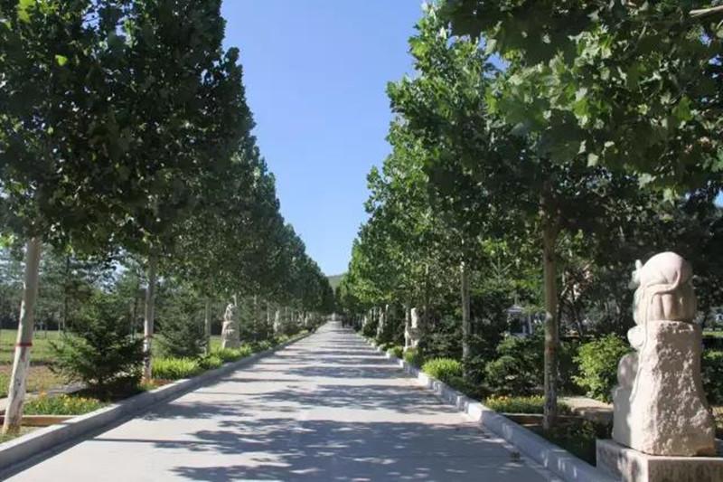 三河灵山宝塔陵园风景
