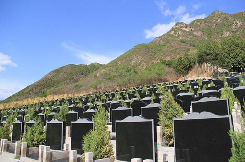 北京景仰园骨灰林墓碑