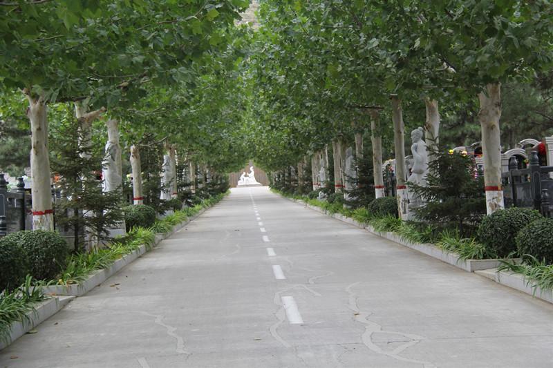 灵山宝塔陵园树葬价格