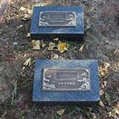 天寿陵园树葬墓地单穴