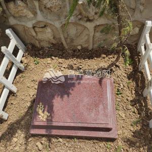 九公山陵园树葬墓地