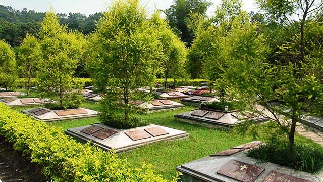 树葬墓地图片