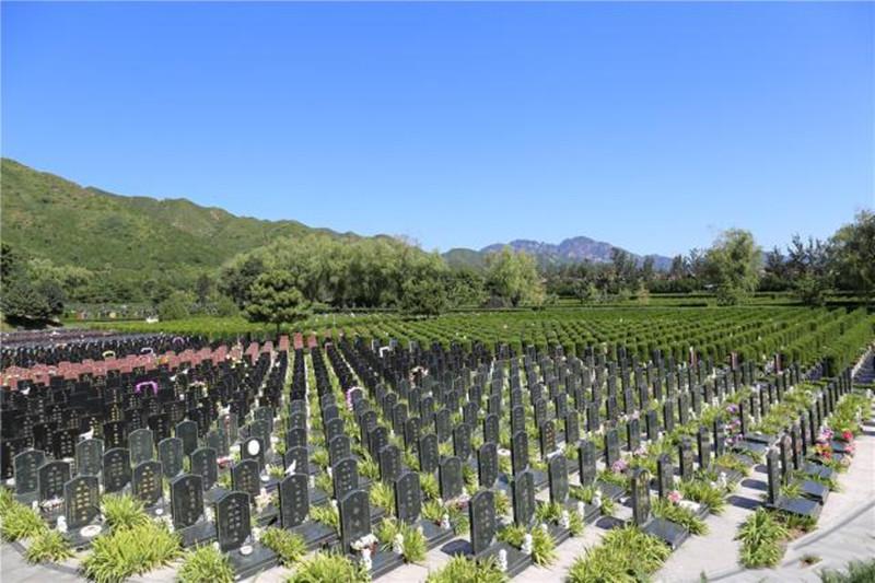 天寿陵园碑