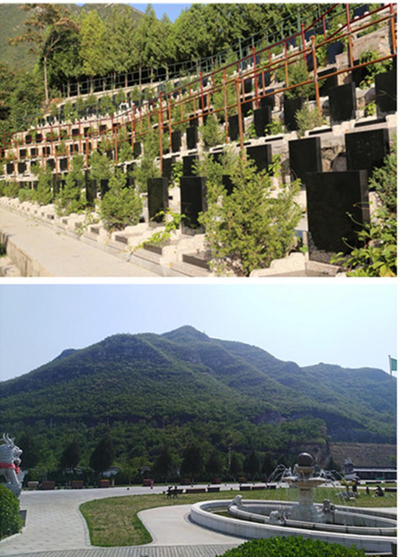 桃峰陵园和景仰园哪个好