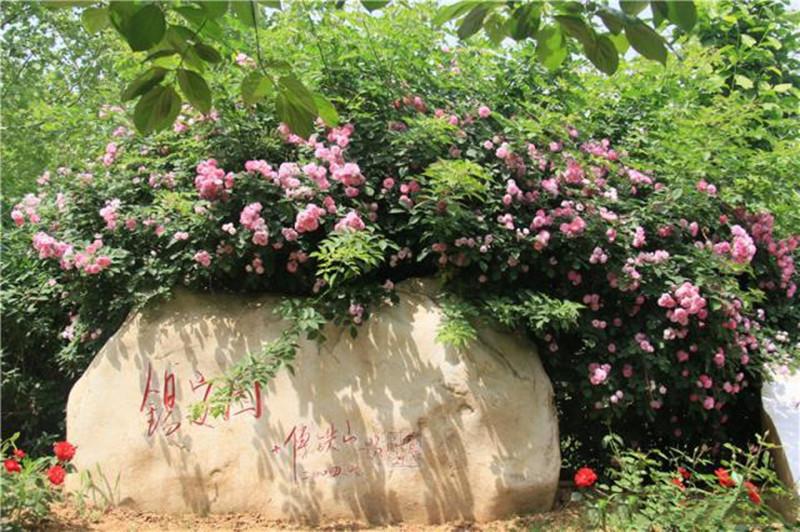 三河灵山宝塔锡安园