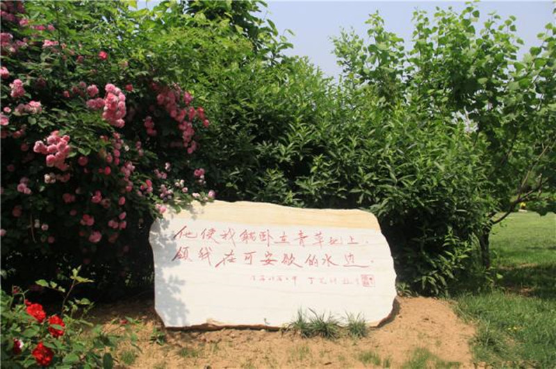 锡安园题字石