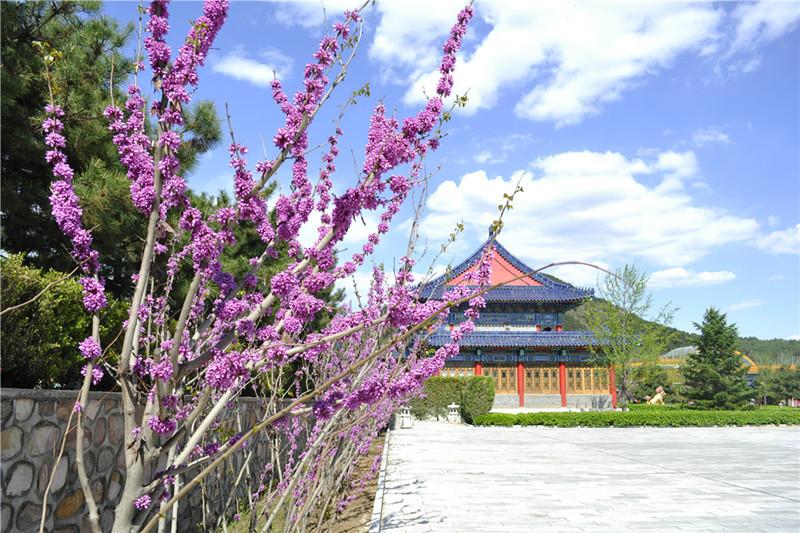 清东陵万佛园墓地