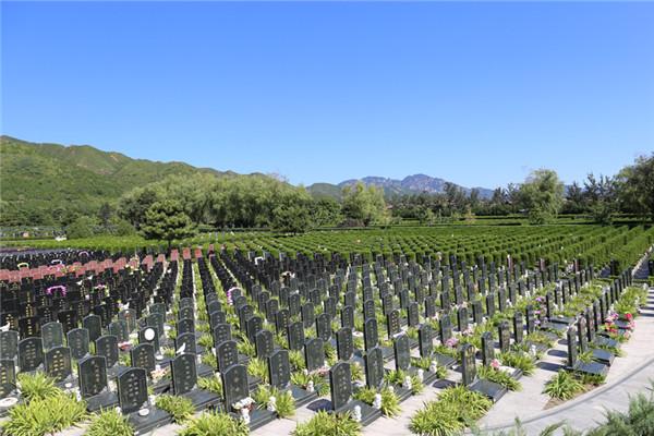 天寿陵园墓地价格