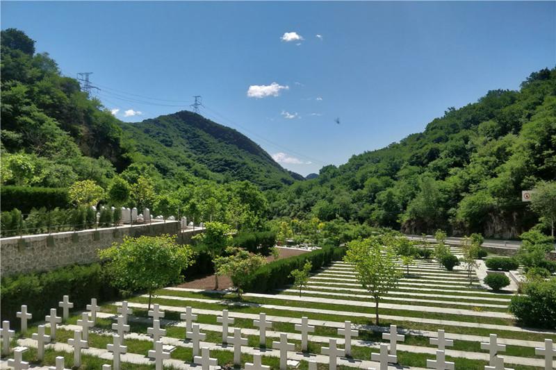 九公山树葬