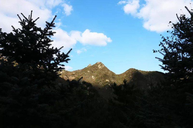 福泽园景色