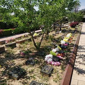 卧碑树葬公墓