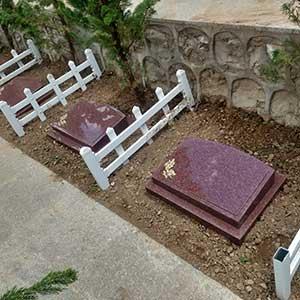 景仰园树葬