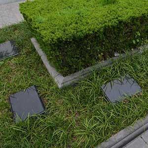 景仰园陵园树葬
