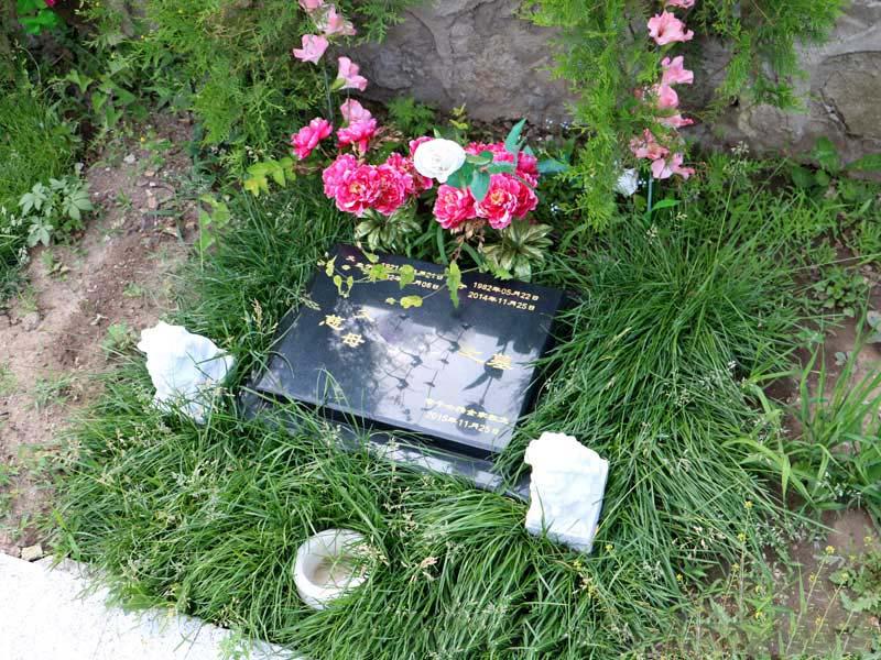 北京九公山树葬公墓