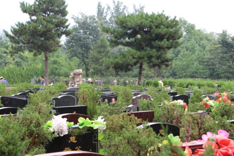 天寿陵园墓区景观