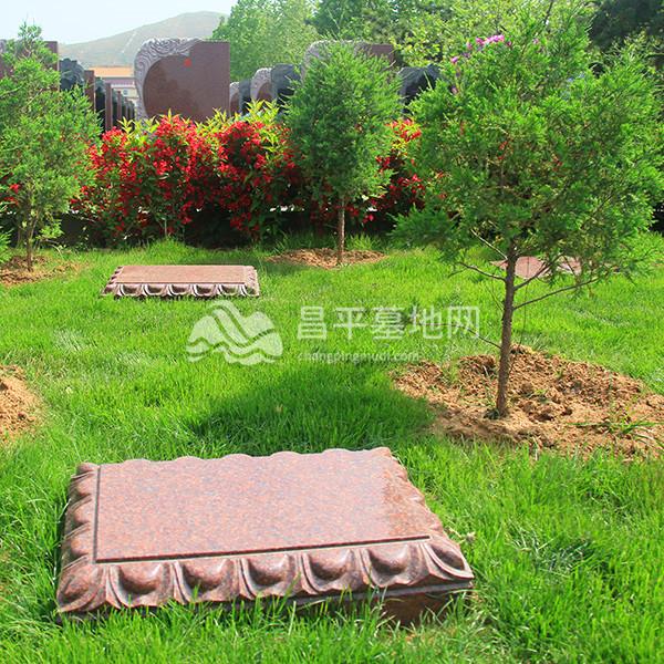 灵山宝塔陵园树葬
