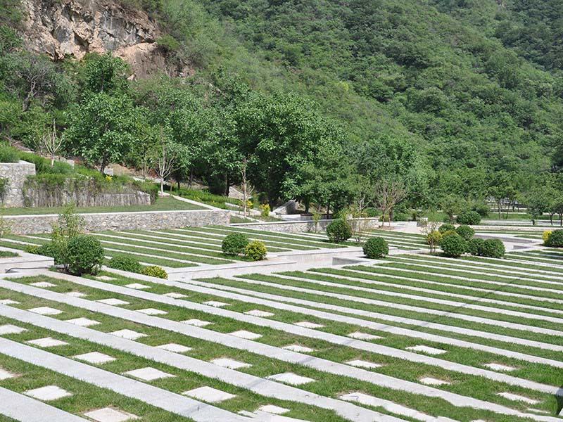 墓地卧碑实拍