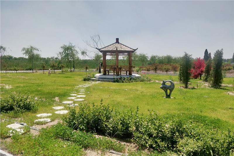 河北清颐园公墓环境