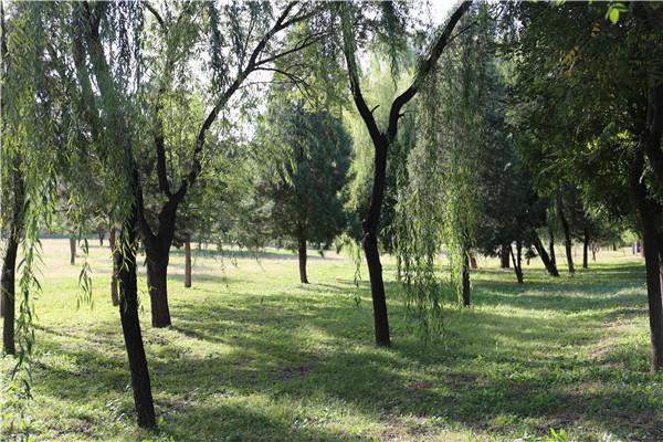 太子峪陵园景观