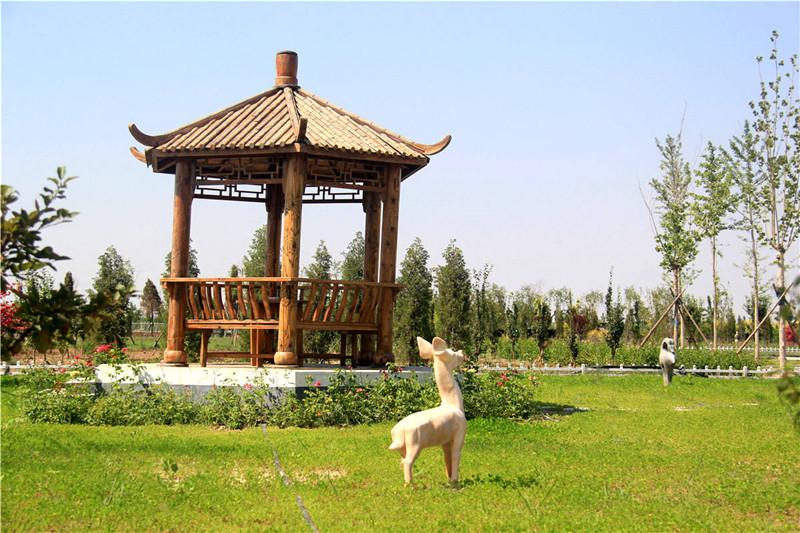 文安县清颐园公墓环境