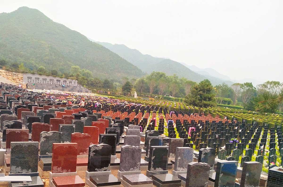 天寿陵园墓区