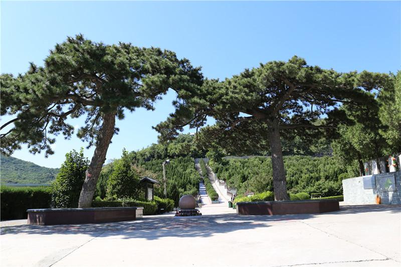 温泉墓园环境