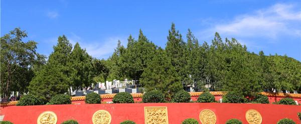九里山公墓二区环境