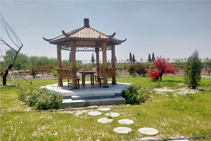 清颐园墓地环境