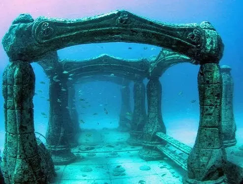 墓园同时也是海洋生物的栖息地