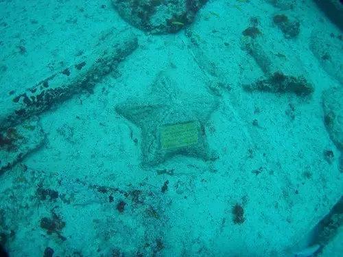 海星形状的墓碑
