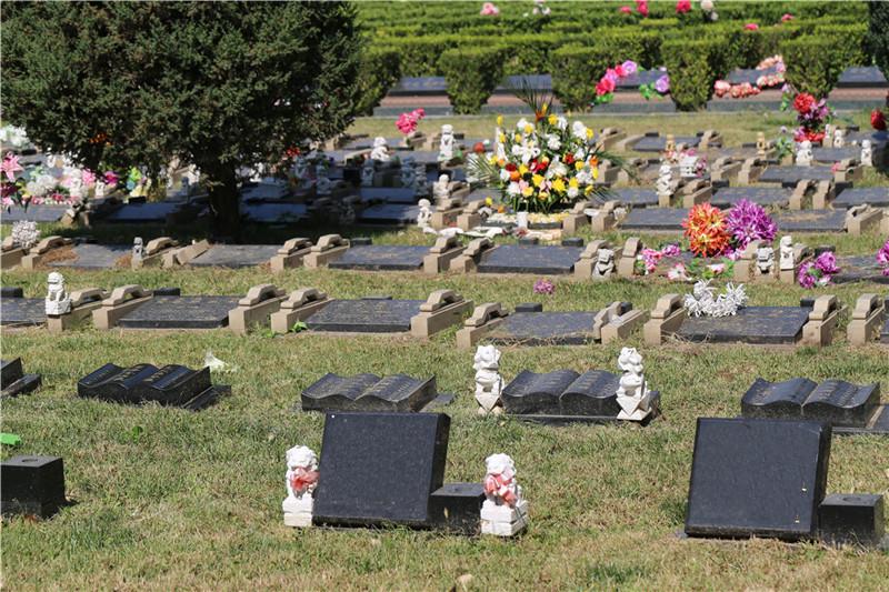 长青园陵园墓地