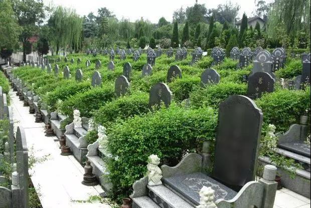 位于西安的某公墓园地
