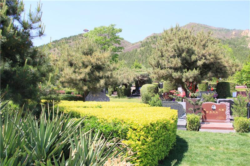 南口天寿陵园景观
