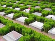 殡葬新规下,公墓定制小型墓碑要注重石材、款式和雕刻三方面