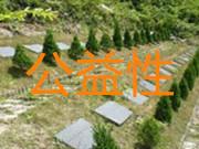 加强公益性公墓建设的几点建议