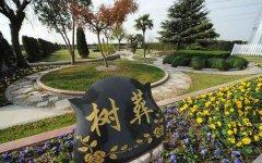 北京昌平树葬公墓