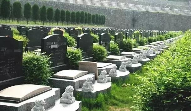 殡葬墓区环境