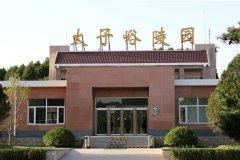 清明期间北京太子峪陵园成为祭扫最堵的陵园之一