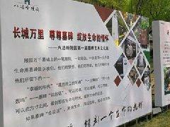 八达岭陵园第一届墓碑艺术文化展落成