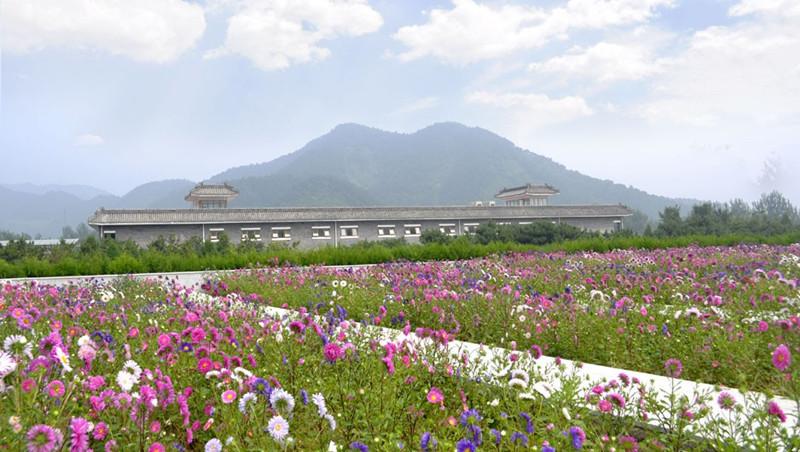 清东陵万佛园墓地景观
