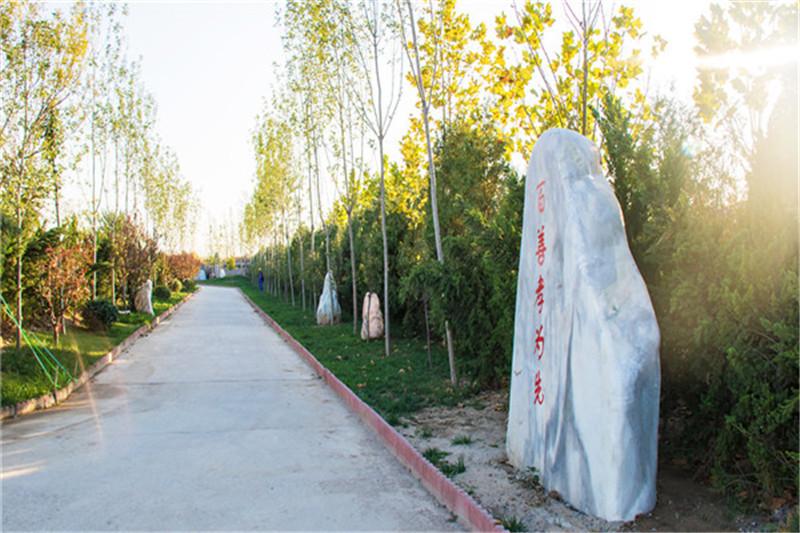 涿州卧龙公墓一角